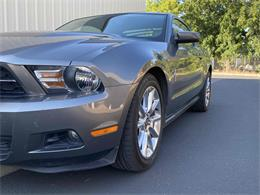 2010 Ford Mustang (CC-1371015) for sale in Anderson, California