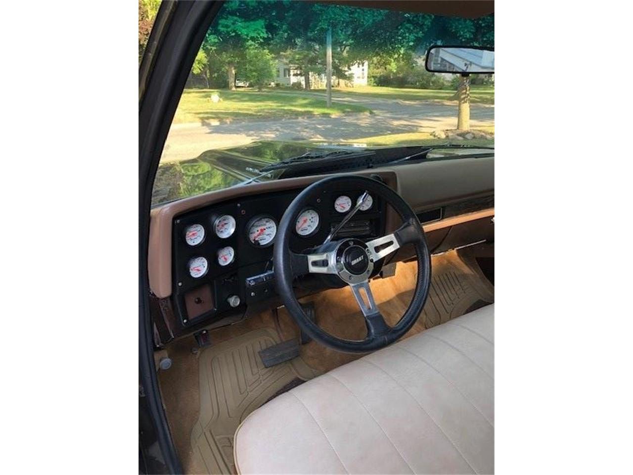 1979 Chevrolet C10 (CC-1372150) for sale in ROMEO, Michigan