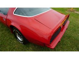 1975 Pontiac Firebird Trans Am (CC-1374080) for sale in Clarence, Iowa