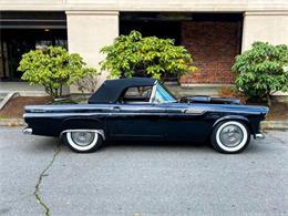 1955 Ford Thunderbird (CC-1374939) for sale in Arlington, Texas