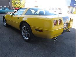 1995 Chevrolet Corvette (CC-1374977) for sale in Troy, Michigan