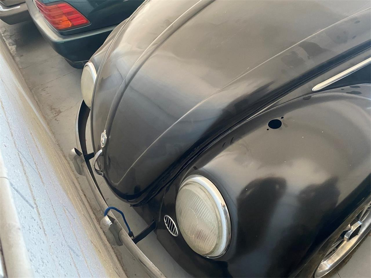 1956 Volkswagen Beetle (CC-1375069) for sale in Tampa, Florida