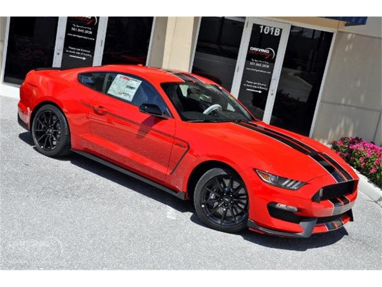 2015 Shelby GT350 (CC-1375133) for sale in West Palm Beach, Florida