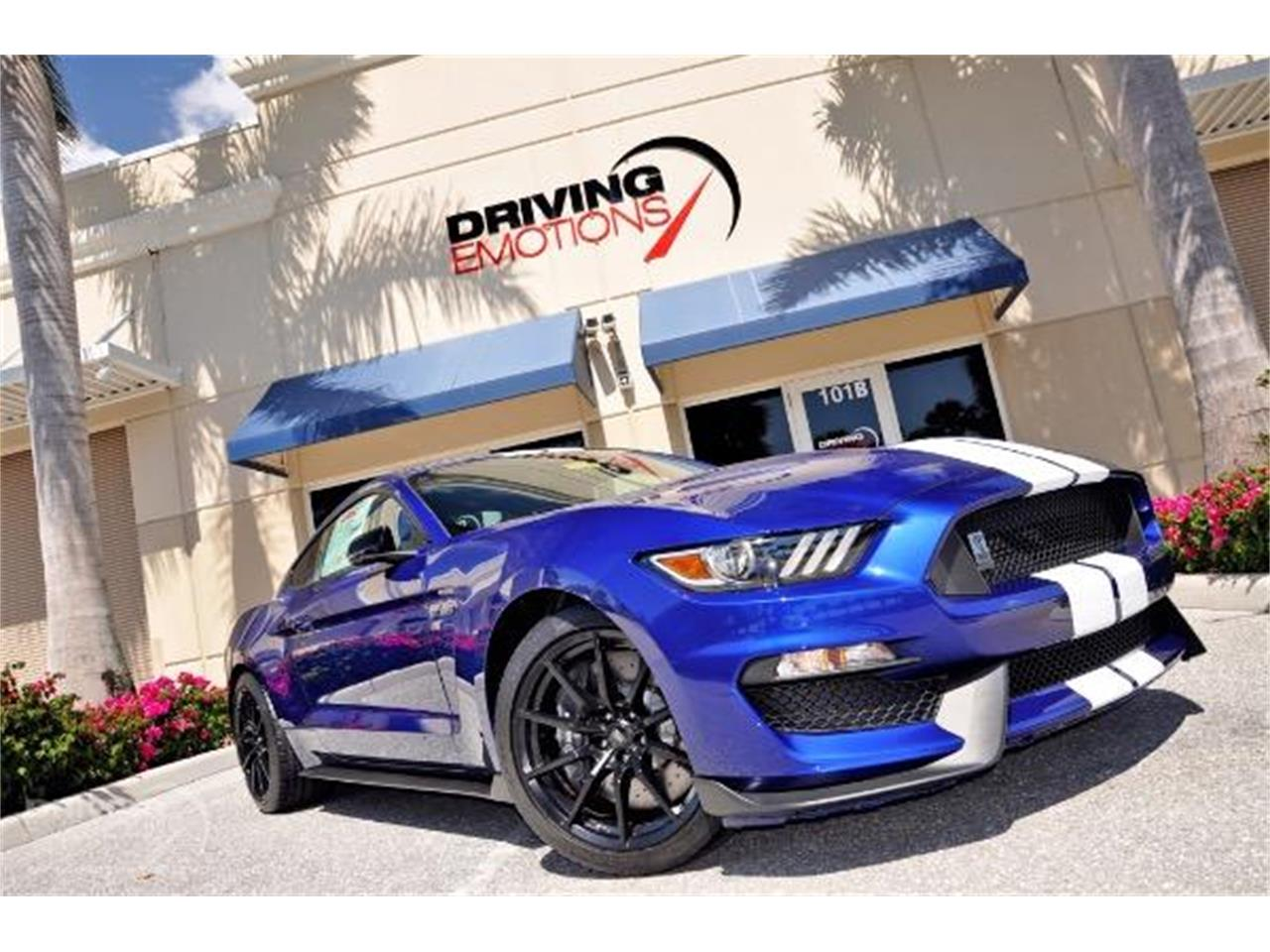2015 Shelby GT350 (CC-1375140) for sale in West Palm Beach, Florida