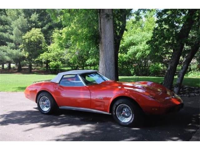 1975 Chevrolet Corvette (CC-1375703) for sale in Cadillac, Michigan