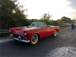 1955 Ford Thunderbird (CC-1376377) for sale in Cadillac, Michigan