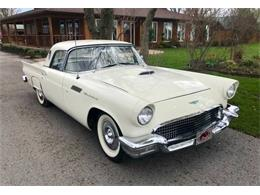 1957 Ford Thunderbird (CC-1376700) for sale in Cadillac, Michigan