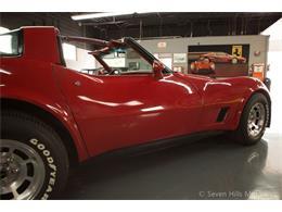 1981 Chevrolet Corvette (CC-1376730) for sale in Cincinnati, Ohio