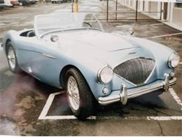 1954 Austin-Healey 100-4 (CC-1377170) for sale in Cadillac, Michigan