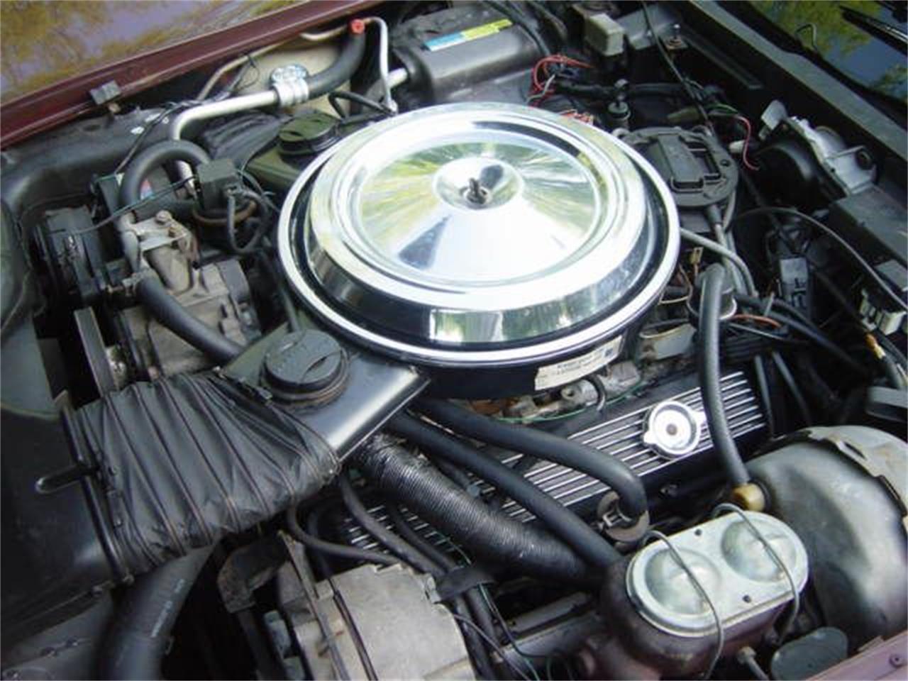 1981 Chevrolet Corvette (CC-1377458) for sale in Hendersonville, Tennessee