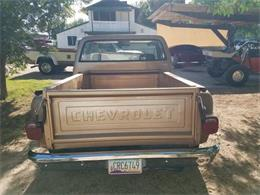 1980 Chevrolet C10 (CC-1377603) for sale in Cadillac, Michigan