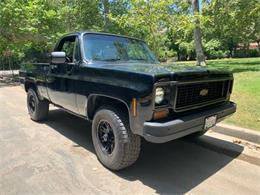 1973 Chevrolet Silverado (CC-1377650) for sale in Cadillac, Michigan