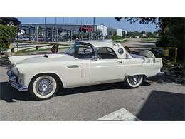 1956 Ford Thunderbird (CC-1377983) for sale in Palmetto, Florida