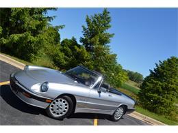 1986 Alfa Romeo Quadrifoglio (CC-1379402) for sale in Barrington, Illinois