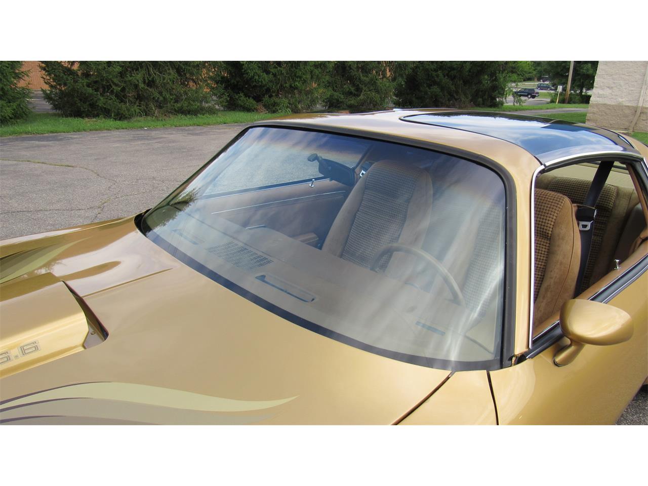 1979 Pontiac Firebird Trans Am (CC-1379420) for sale in Milford, Ohio