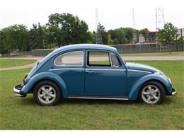 1965 Volkswagen Beetle (CC-1379634) for sale in Watertown, Minnesota