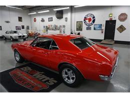 1967 Pontiac Firebird (CC-1379935) for sale in Glen Burnie, Maryland