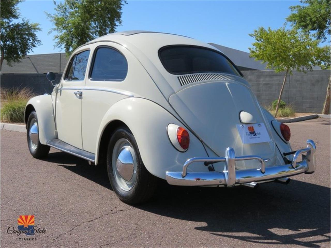 1962 Volkswagen Beetle (CC-1381062) for sale in Tempe, Arizona