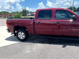 2013 Chevrolet Silverado (CC-1381136) for sale in Tavares, Florida