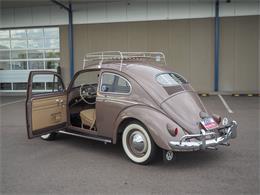 1955 Volkswagen Beetle (CC-1381695) for sale in Englewood, Colorado
