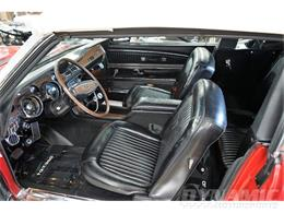 1968 Shelby GT350 (CC-1381738) for sale in Garland, Texas