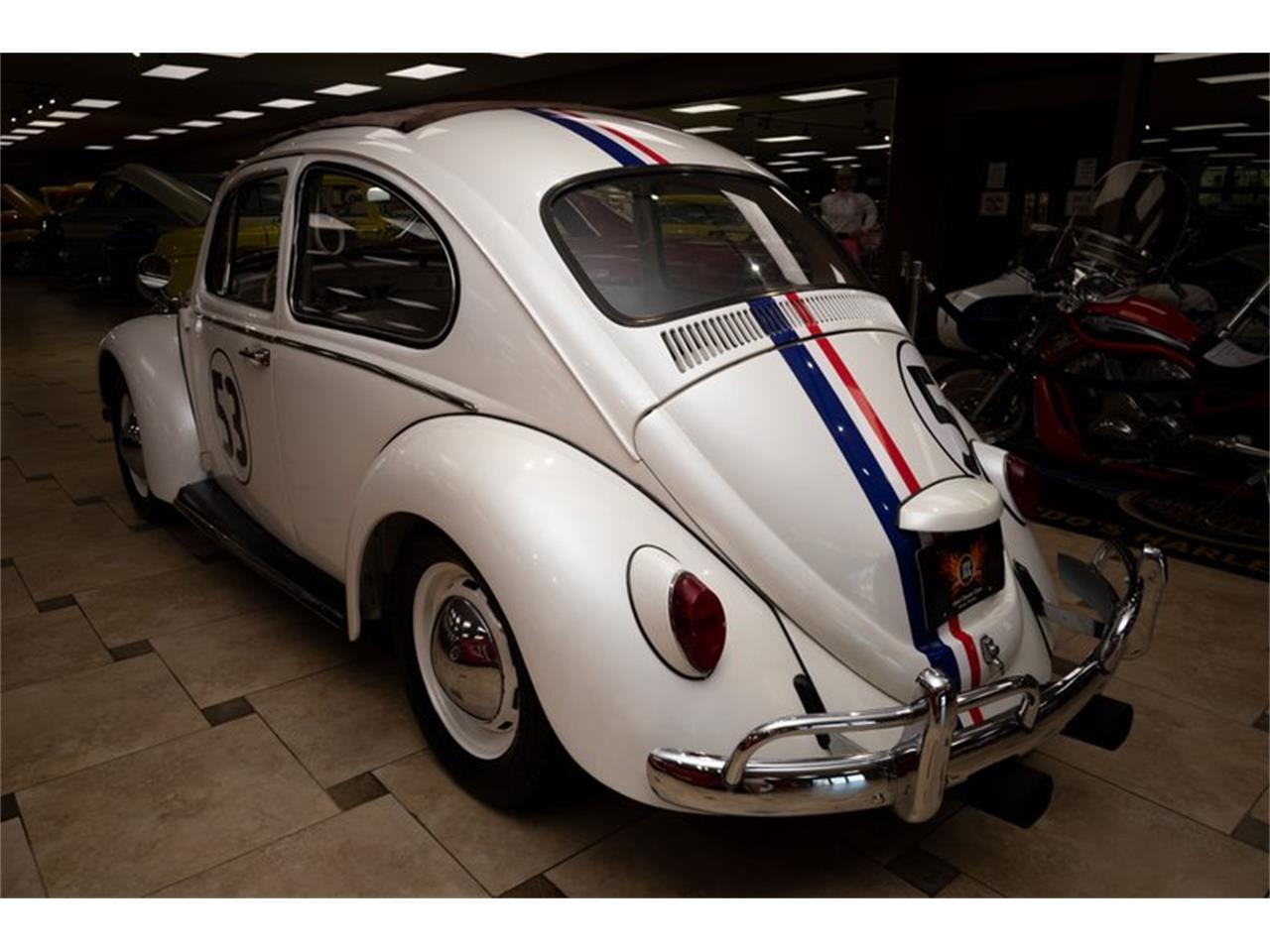 1967 Volkswagen Beetle (CC-1381914) for sale in Venice, Florida