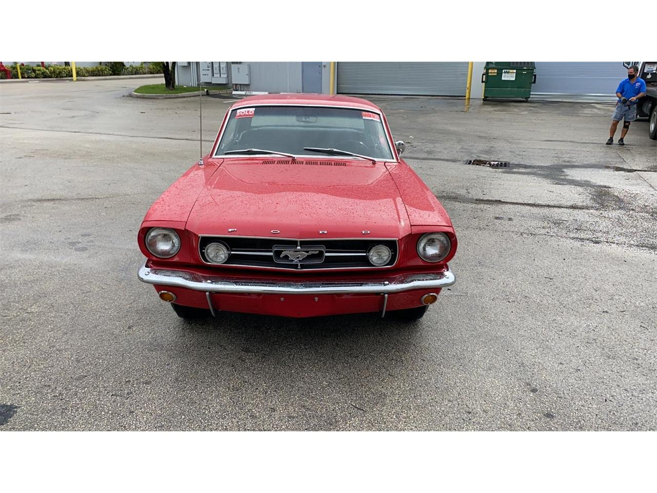 1965 Ford Mustang (CC-1382021) for sale in Miami, Florida
