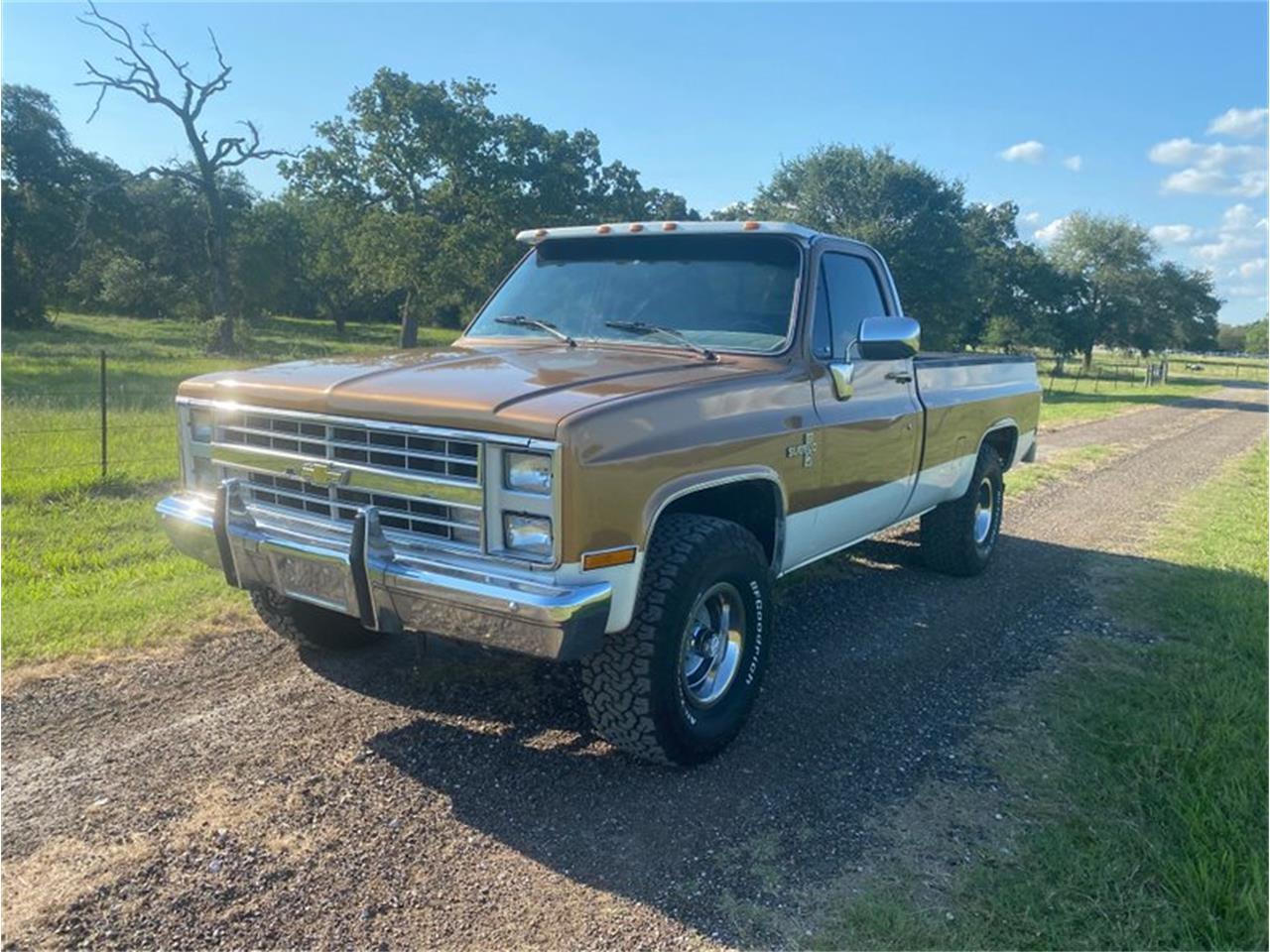 1985 Chevrolet K-10 (CC-1382426) for sale in Goliad, Texas