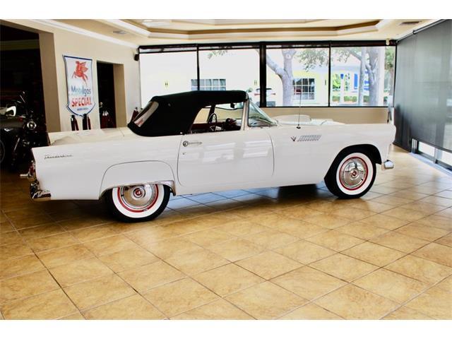 1955 Ford Thunderbird (CC-1382685) for sale in Sarasota, Florida