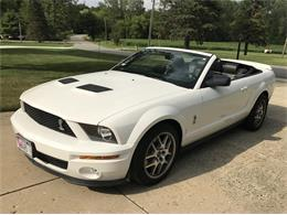 2007 Shelby GT500 (CC-1382812) for sale in Libertyville , Illinois