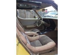 1979 Chevrolet Corvette (CC-1380294) for sale in Cadillac, Michigan