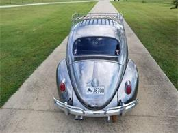 1959 Volkswagen Beetle (CC-1380317) for sale in Cadillac, Michigan