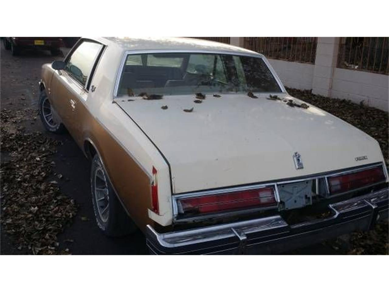 1980 Buick Regal (CC-1380336) for sale in Cadillac, Michigan