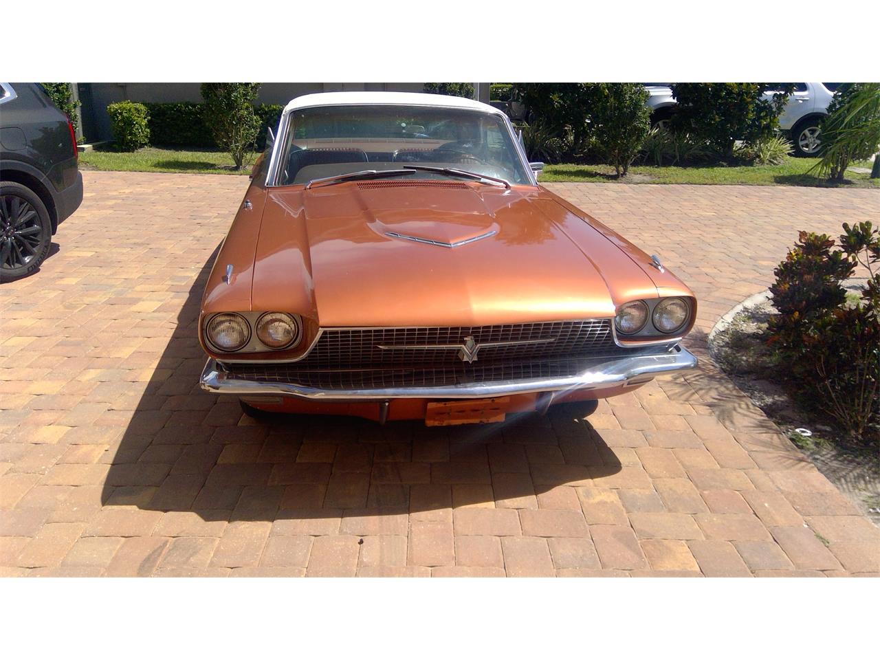 1966 Ford Thunderbird (CC-1383773) for sale in Orlando, Florida