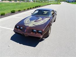 1981 Pontiac Firebird Trans Am (CC-1383938) for sale in O'Fallon, Illinois