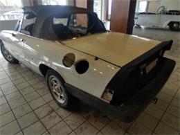 1986 Alfa Romeo Spider (CC-1384056) for sale in Miami, Florida
