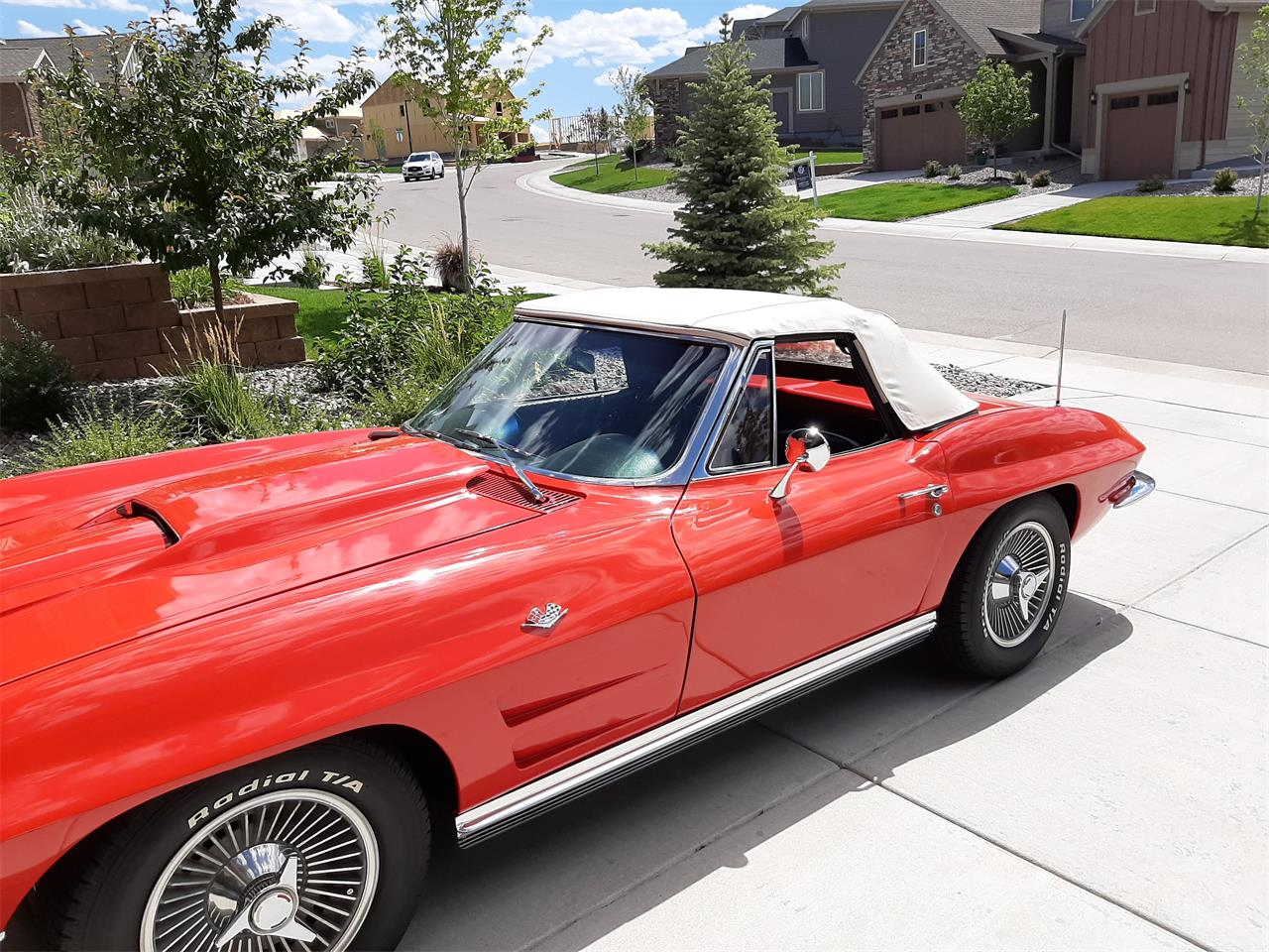 1964 Chevrolet Corvette Stingray (CC-1384275) for sale in Lonetree, Colorado