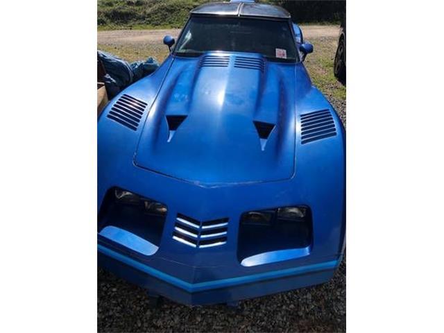 1979 Chevrolet Corvette (CC-1384483) for sale in Cadillac, Michigan