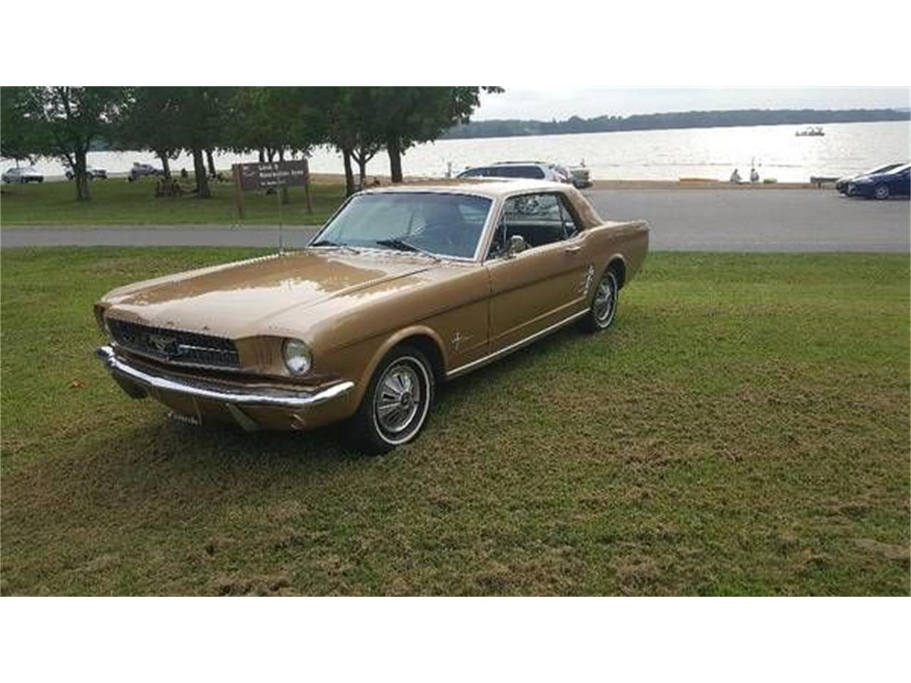 1966 Ford Mustang (CC-1384570) for sale in Cadillac, Michigan
