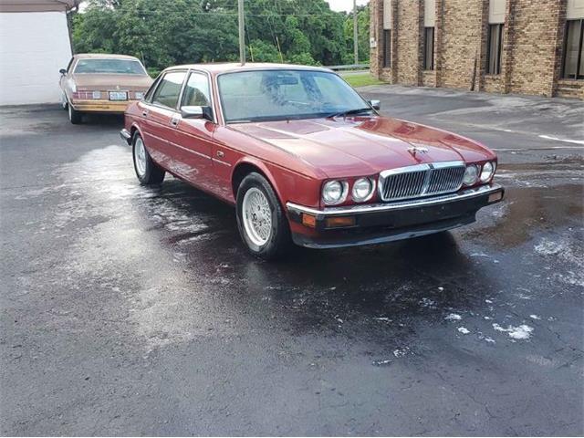 1990 Jaguar XJ (CC-1384574) for sale in Cadillac, Michigan
