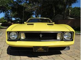 1973 Ford Mustang (CC-1384747) for sale in Lakeland, Florida