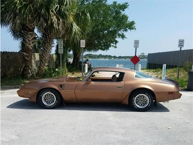 1979 Pontiac Firebird Trans Am (CC-1384812) for sale in Fort Walton Beach, Florida