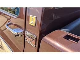 1979 Chevrolet C/K 10 (CC-1380482) for sale in North Pheonix, Arizona
