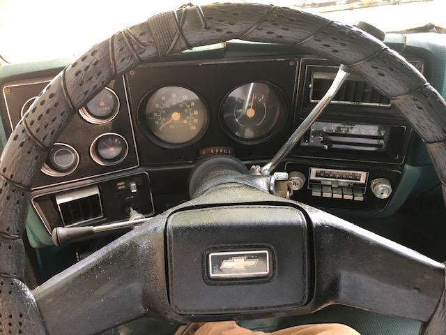 1978 Chevrolet Scottsdale (CC-1384855) for sale in Jasper, Georgia