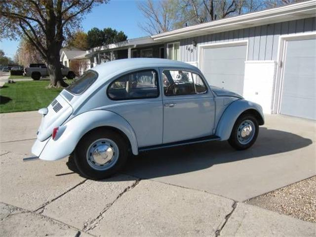 1969 Volkswagen Beetle (CC-1385863) for sale in Cadillac, Michigan