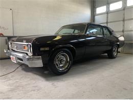 1974 Chevrolet Nova (CC-1385893) for sale in Cadillac, Michigan