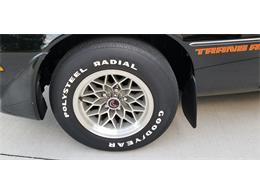 1979 Pontiac Firebird Trans Am (CC-1386301) for sale in Elk River, Minnesota