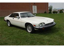 1991 Jaguar XJS (CC-1386523) for sale in Carlisle, Pennsylvania