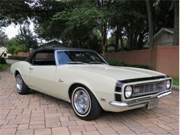 1968 Chevrolet Camaro (CC-1386731) for sale in Lakeland, Florida