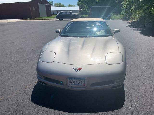 2001 Chevrolet Corvette (CC-1386758) for sale in Annandale, Minnesota